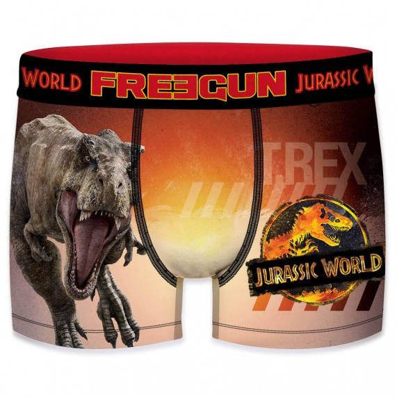 Lot de 4 Boxers Homme Jurassic World (Boxers) Freegun chez FrenchMarket